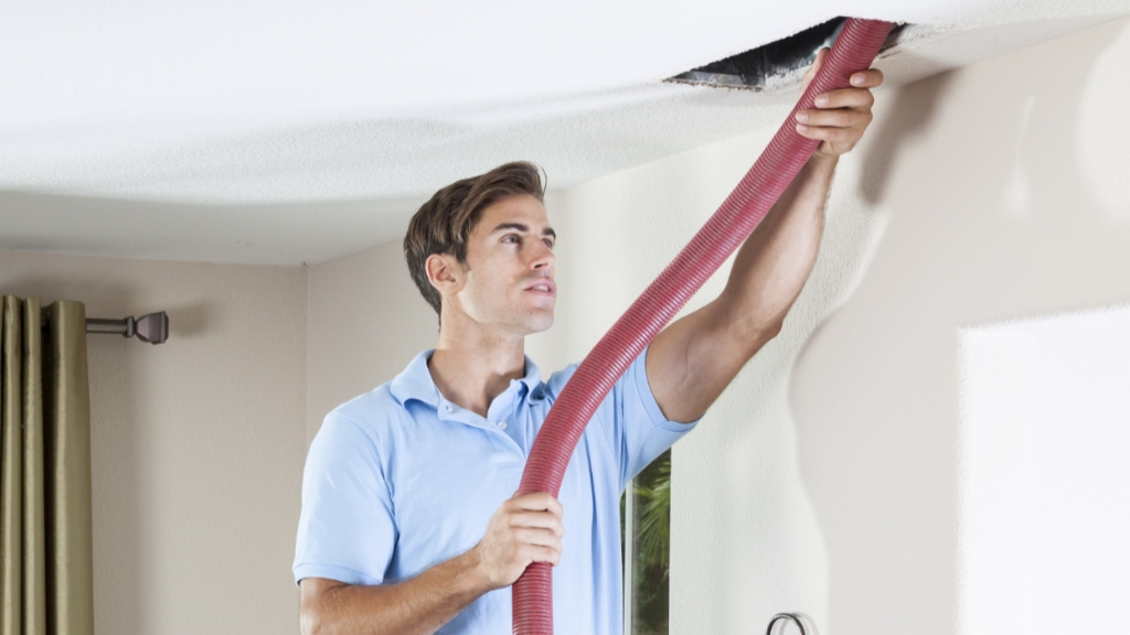 Duct Cleaning service.